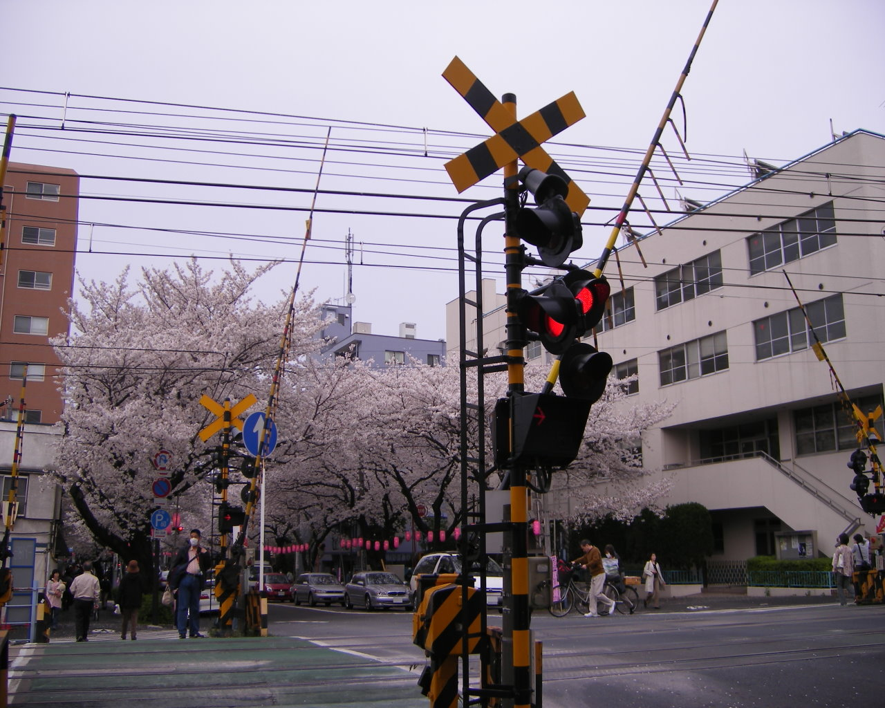 中野通りと西武新宿線の踏み切り